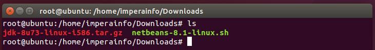 Arquivos baixado para instalação do Netbeans